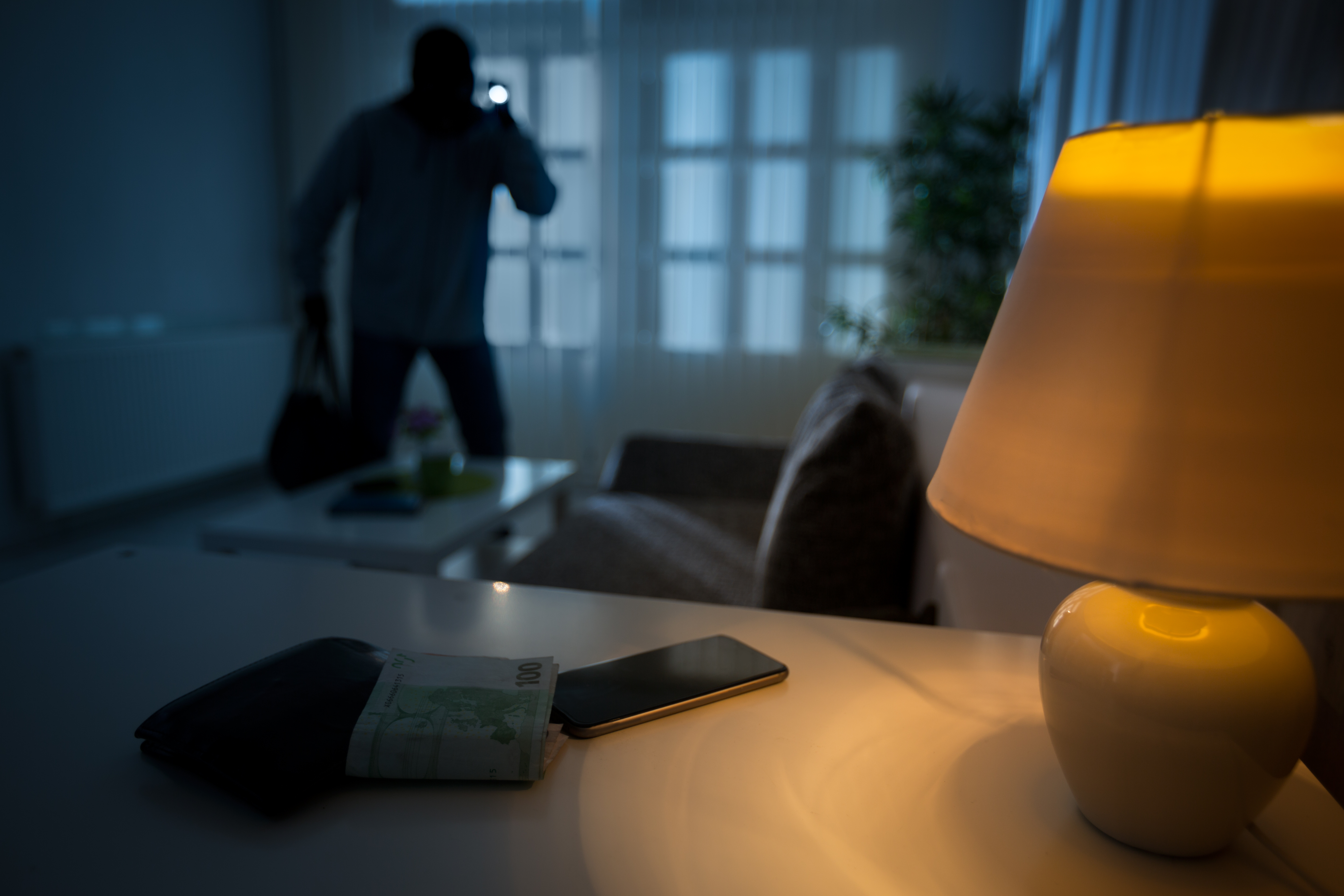 Prevent home burglaries with a home alarm system